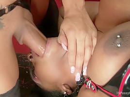 Lisa Tiffian submits to TS Honey Foxxx and her big Ebony Cock