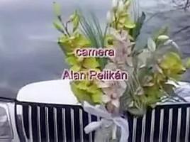 Bi-wedding - retro (no audio)