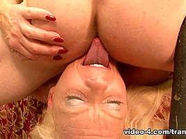 Gabriel D'Alessandro, Mark Frenchy, Joanna Jet in Filthy Shemale Sluts #14