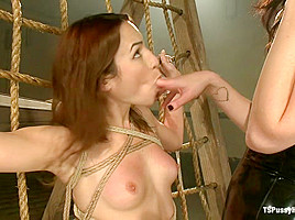 Similar situation. Mia mitchell being fucked in pussy and ass not clear